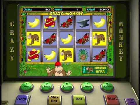 Игровые автоматы обезьяны играть бесплатно без регистрации в каких странах играют в казино